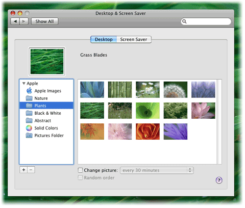 mac basics change your desktop apple support