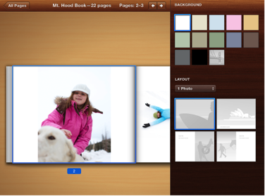 Image of page layout tools in the Design pane