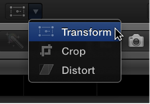 Transform menu item for accessing Transform controls