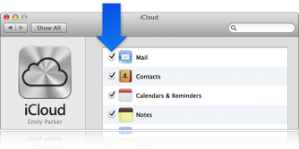 Image of Mail and Notes checkbox selected.