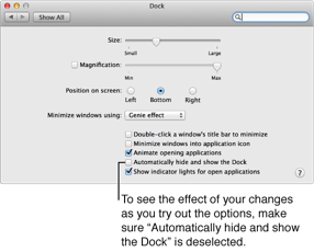 Dock pane of System Preferences