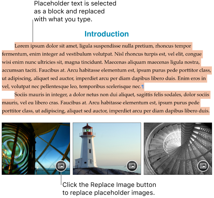 Placeholder text and images.