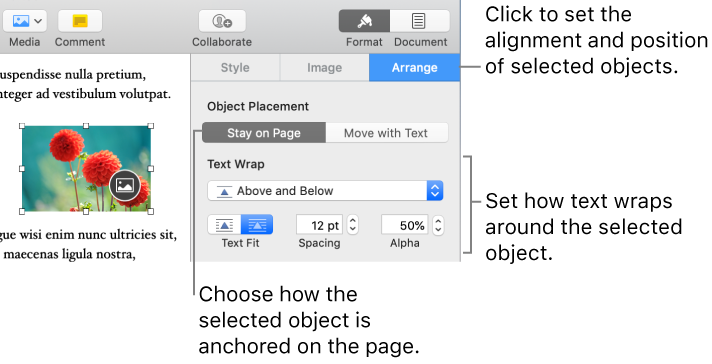 Pages For Mac Place Objects With Text In A Pages Document