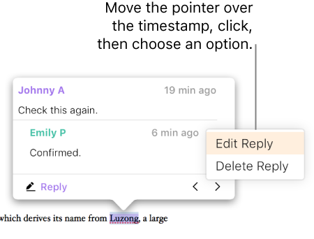 A comment with a reply, and the pointer over the timestamp for the reply; a pop-up menu shows two options: Edit Reply and Delete Reply.