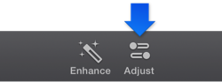 Figure. Adjust button in the toolbar.