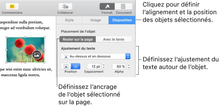 Pages Pour Mac Placer Des Objets Dans Le Texte Dans Un Document Pages