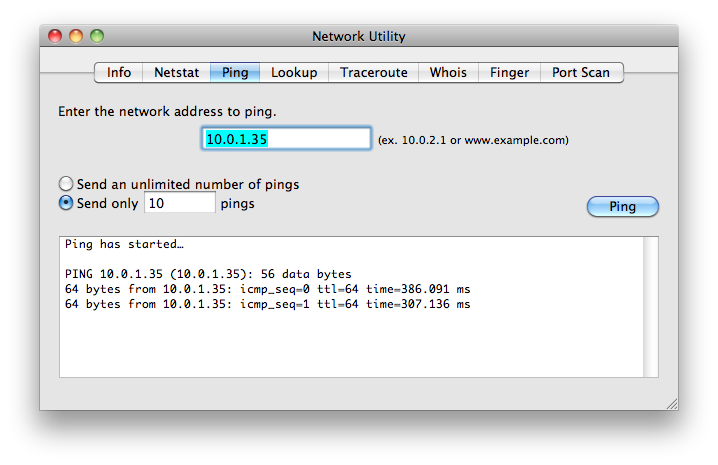 successful ping test on Mac