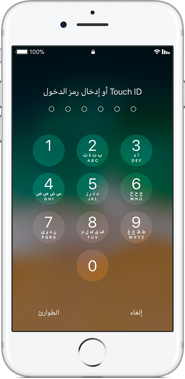 what is passcode lock on ipad