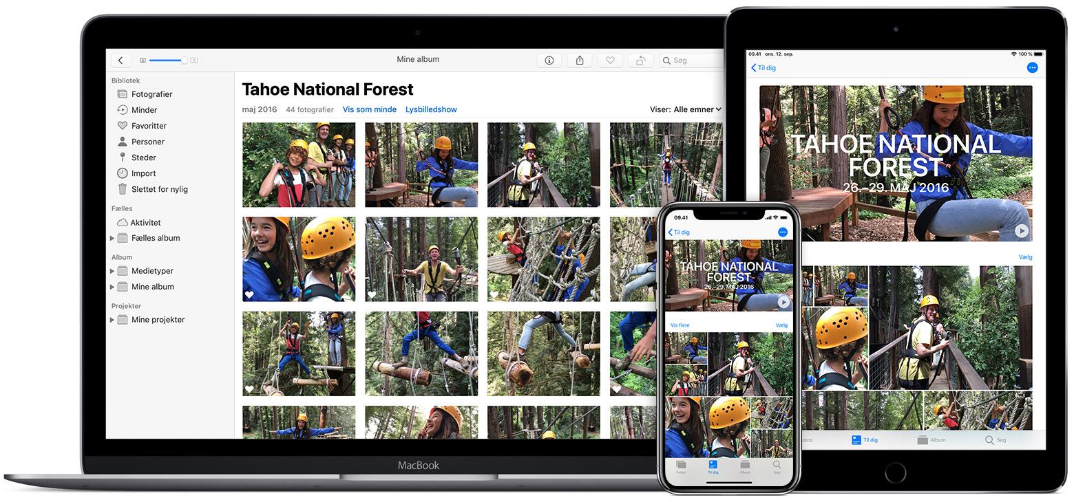 4b7e05fd0c9 Opsætning og brug af iCloud-fotos - Apple-support
