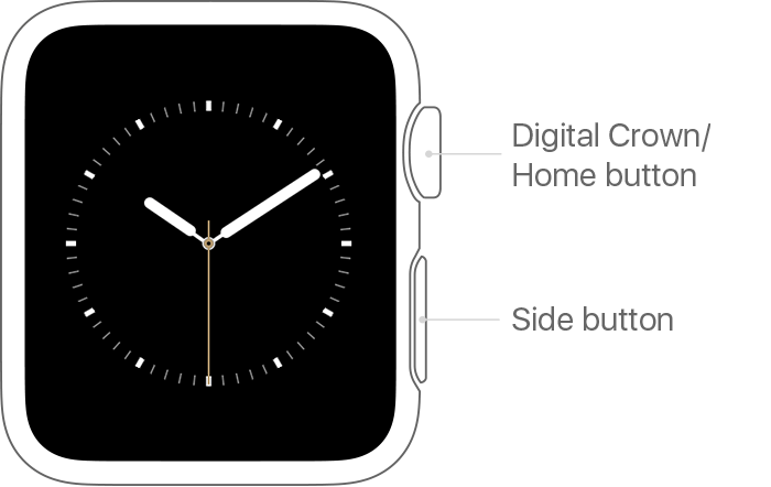 Digital Crown and Side button on Apple Watch