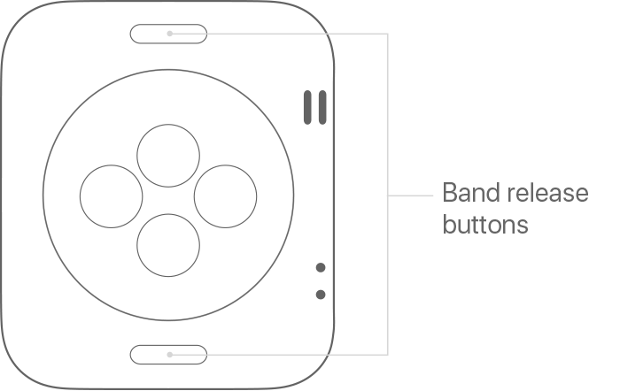 Band release buttons on Apple Watch
