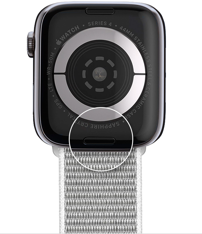 The band release button on the back of your Apple Watch.