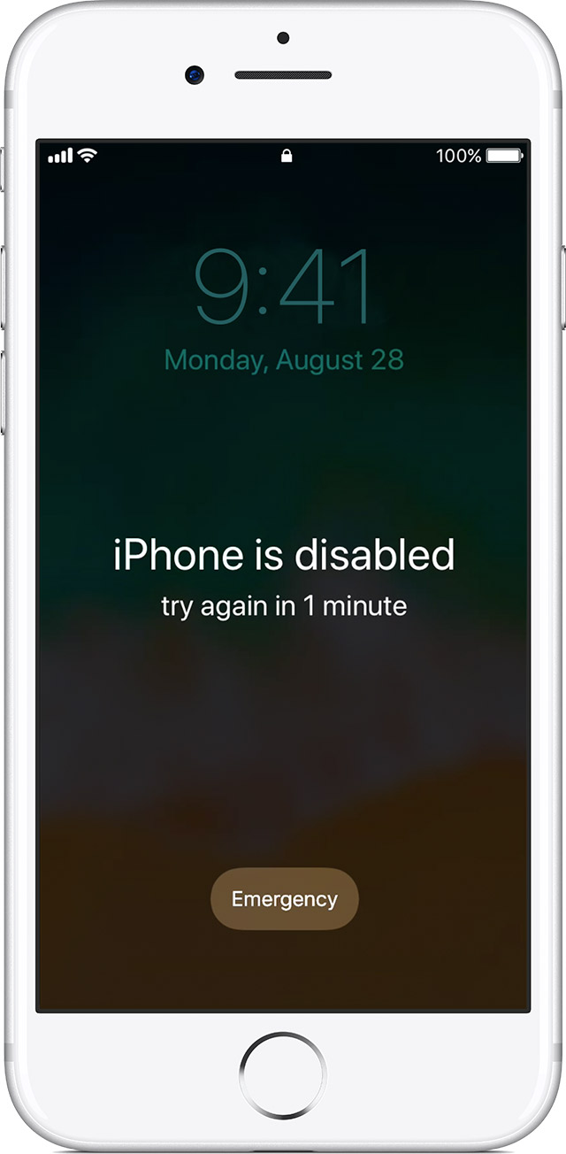 If You Enter The Wrong Passcode On An IOS Device Six Times In A Row Youll Be Locked Out And Message Will Say That Your Is Disabled