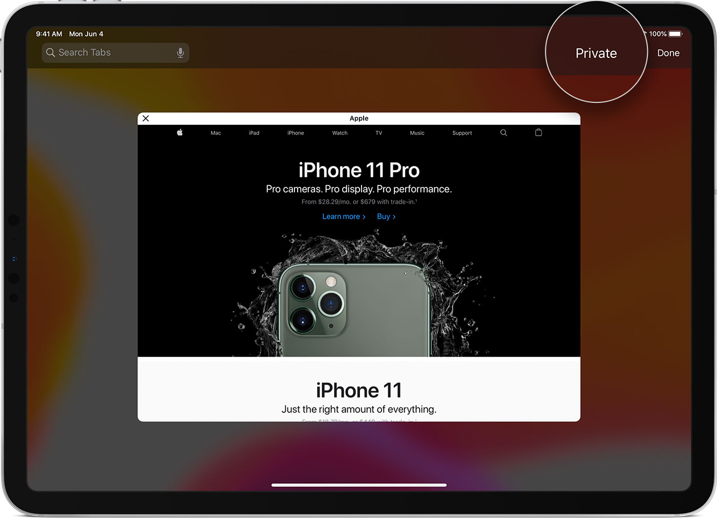 Turn Private Browsing On Or Off On Your Ipad Apple Support