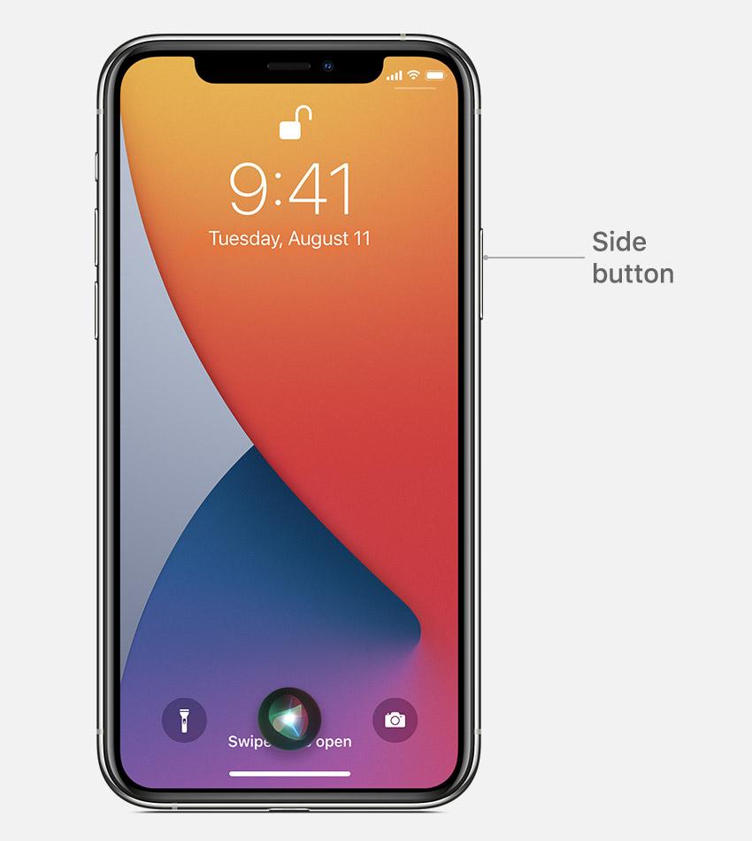 Siri iphone11