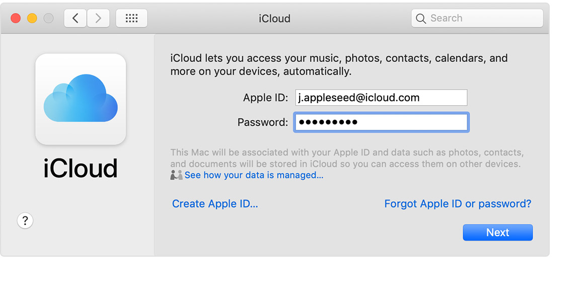 iCloud Apple ID and password screen