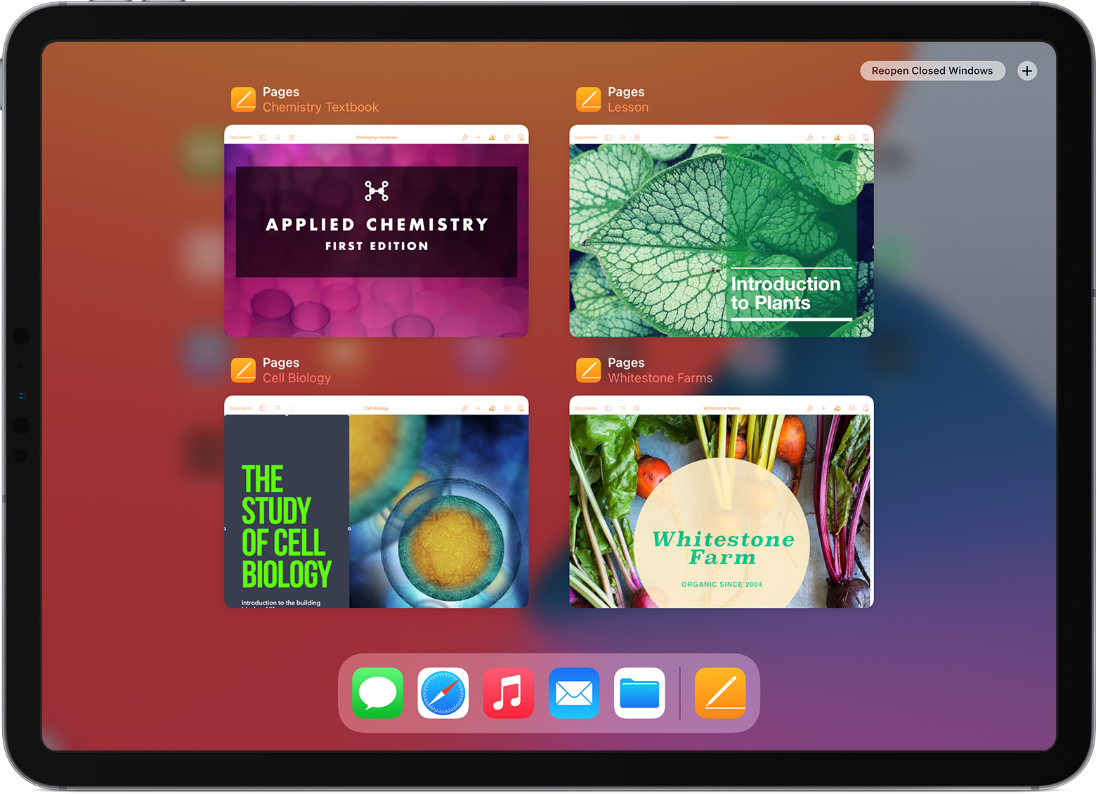 iPad Pro displaying Pages open documents in App Exposé