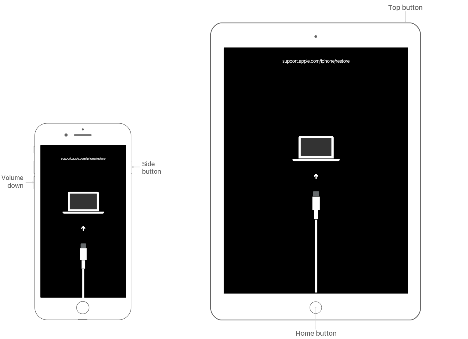 If you forgot the pcode for your iPhone, iPad, or iPod ... A Iphone Schematic Diagram on