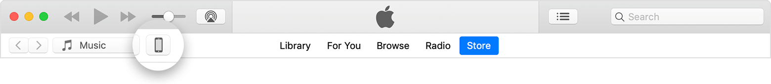 The device icon in the upper left corner of the iTunes window.