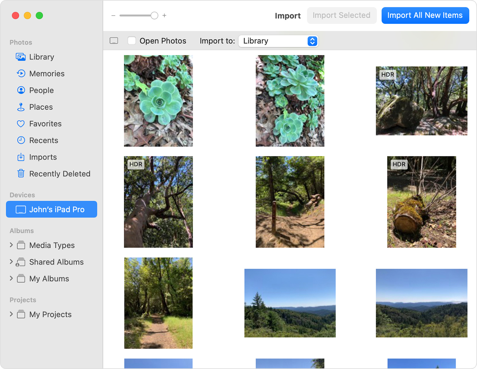 macOS Photos Import window