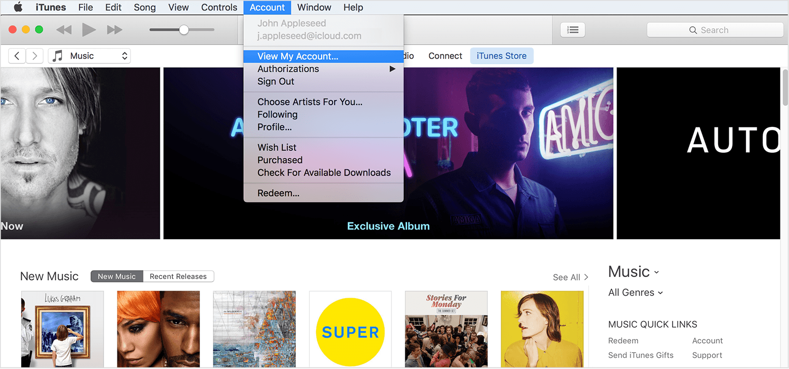 iTunes view account information