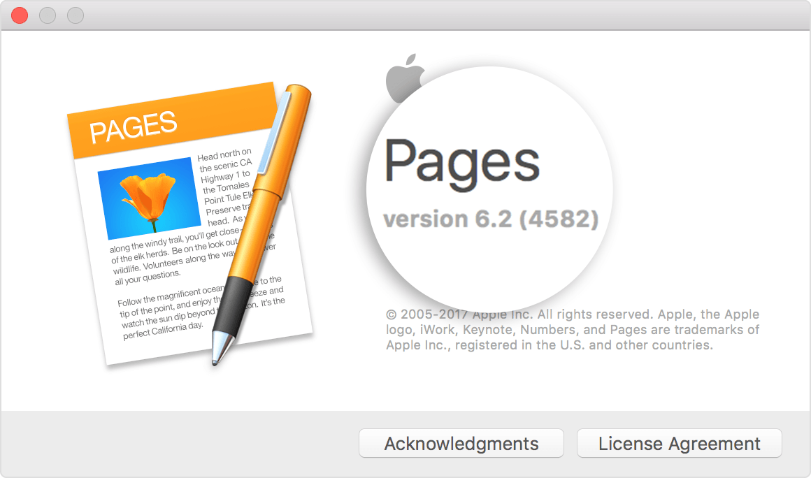 insert reference in pages mac