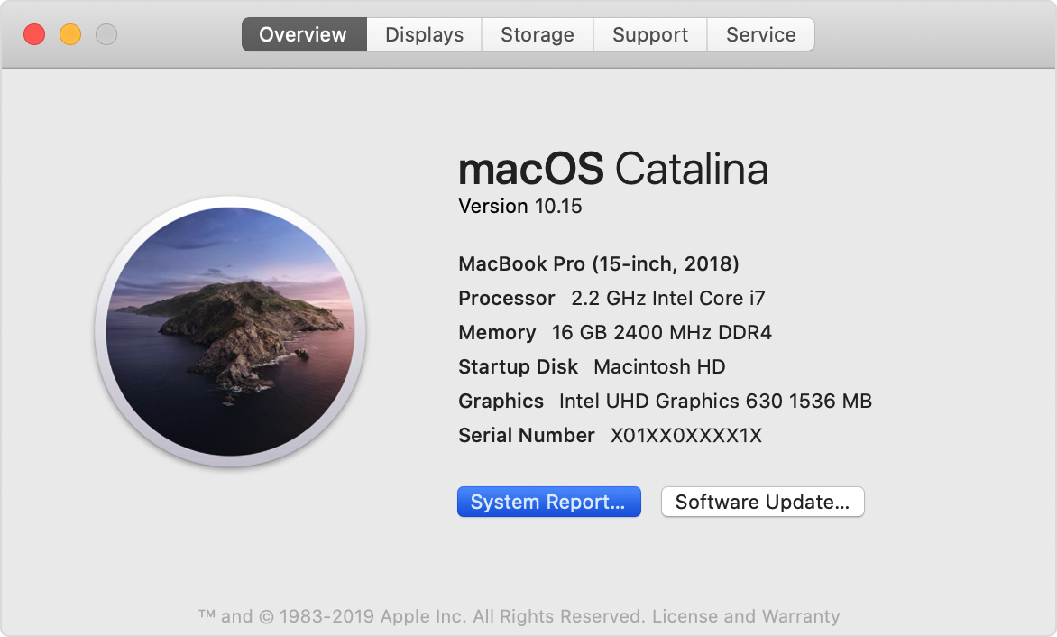 [Image: macos-catalina-mac-overview-system-report.png]