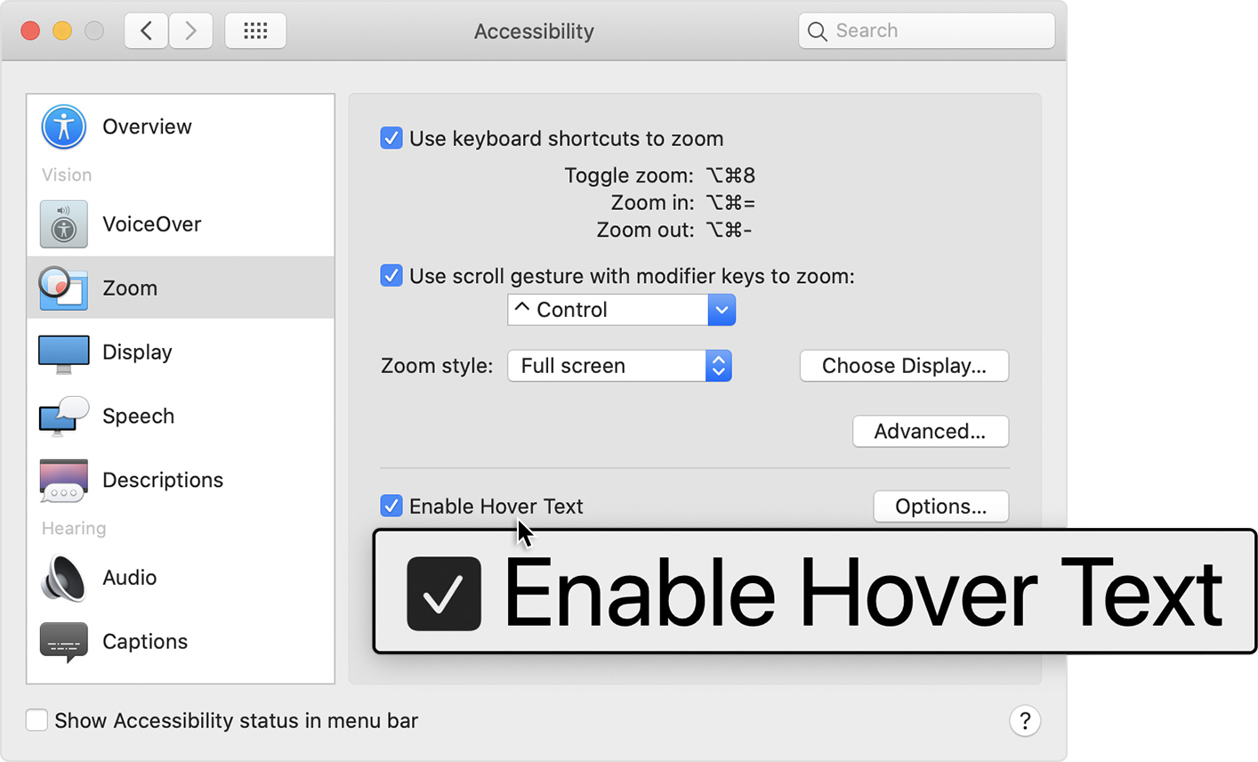 Example of Hover Text in Zoom preferences