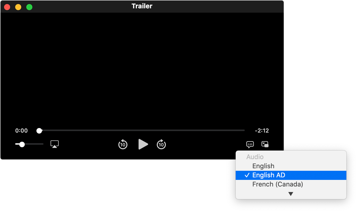 video window showing playback controls