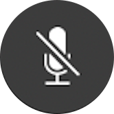 the mute microphone button