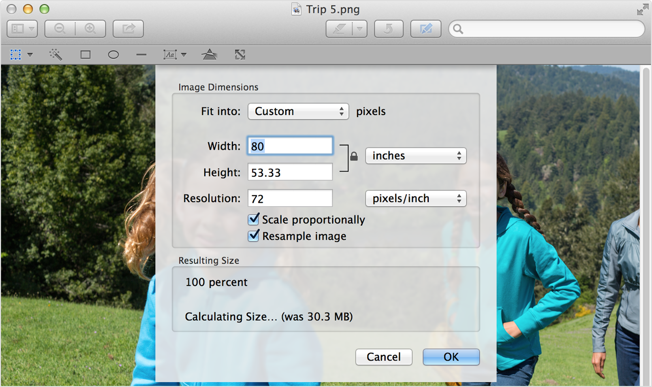 scale your image using width and height adjustments