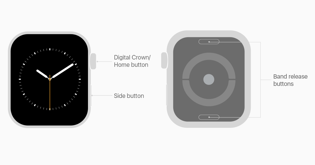 How to use your Apple Watch - Apple Support