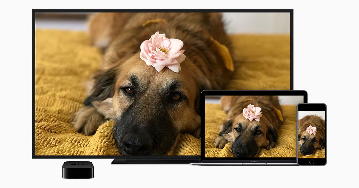 كيفية بث الفيديو عبر Airplay وعكس شاشة جهازك Apple الدعم