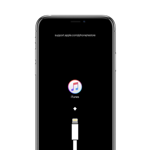 If you see the Connect to iTunes screen on your iPhone, iPad, or