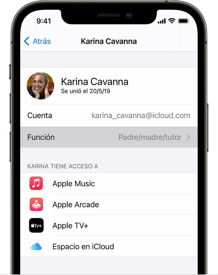 iPhone que muestra el elemento de menú Función.