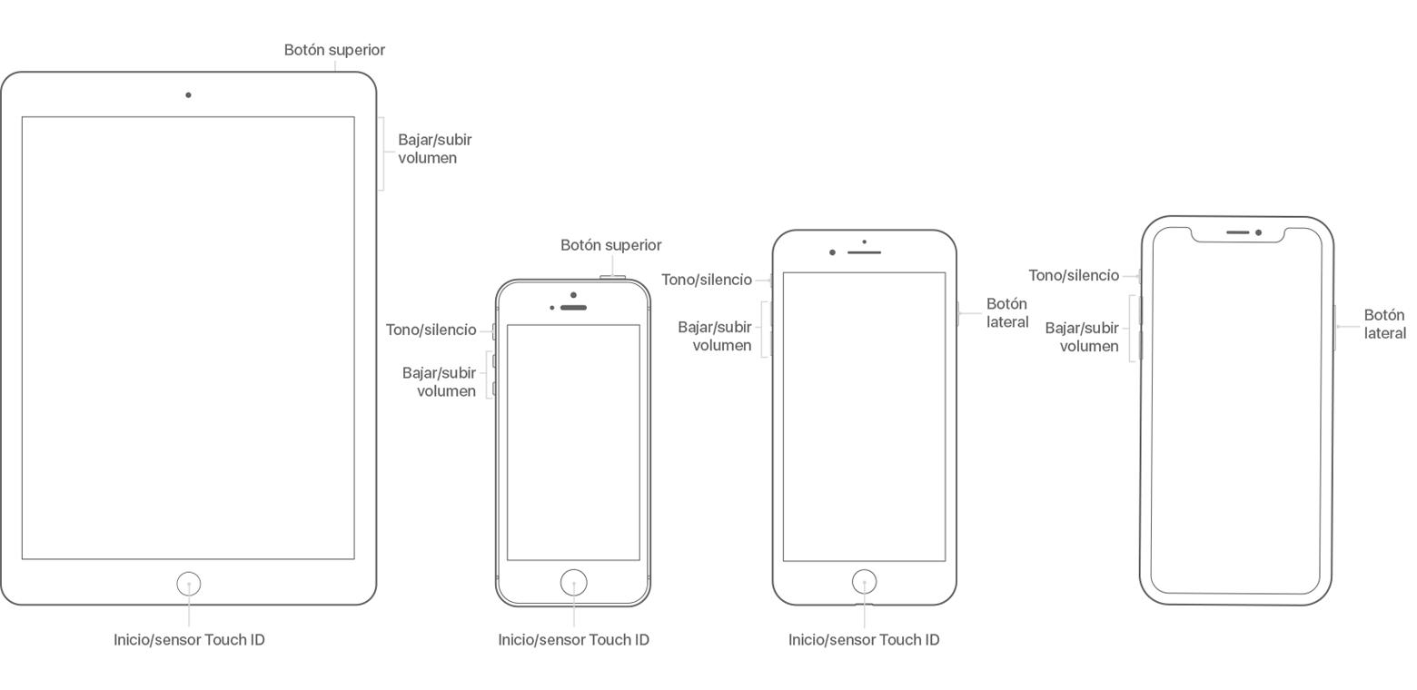 Acerca de los botones e interruptores del iPhone, iPad o iPod ...