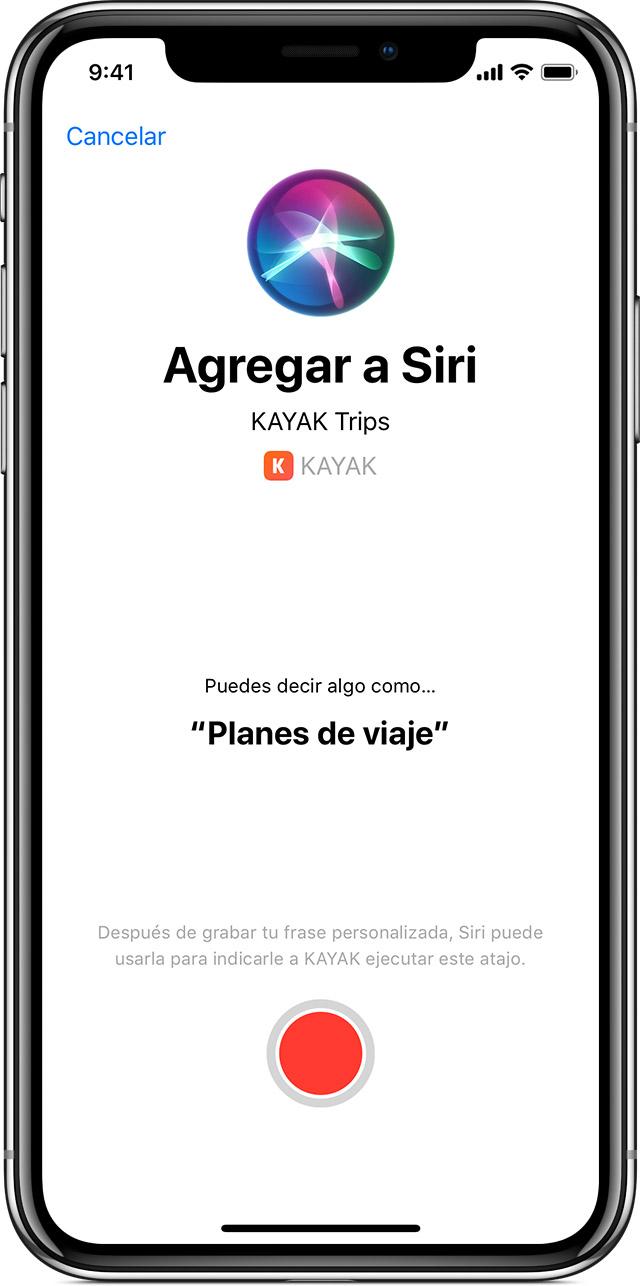 Usar Atajos De Siri Soporte Teacutecnico De Apple