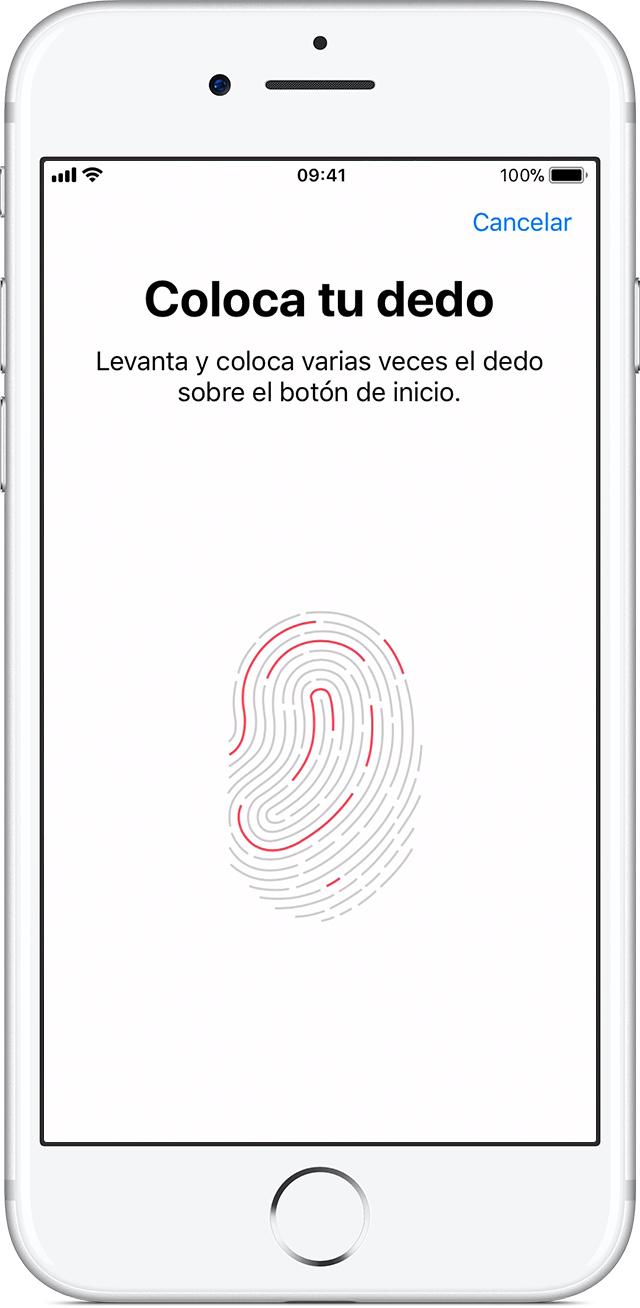 Usar Touch ID en iPhone y iPad - Soporte técnico de Apple