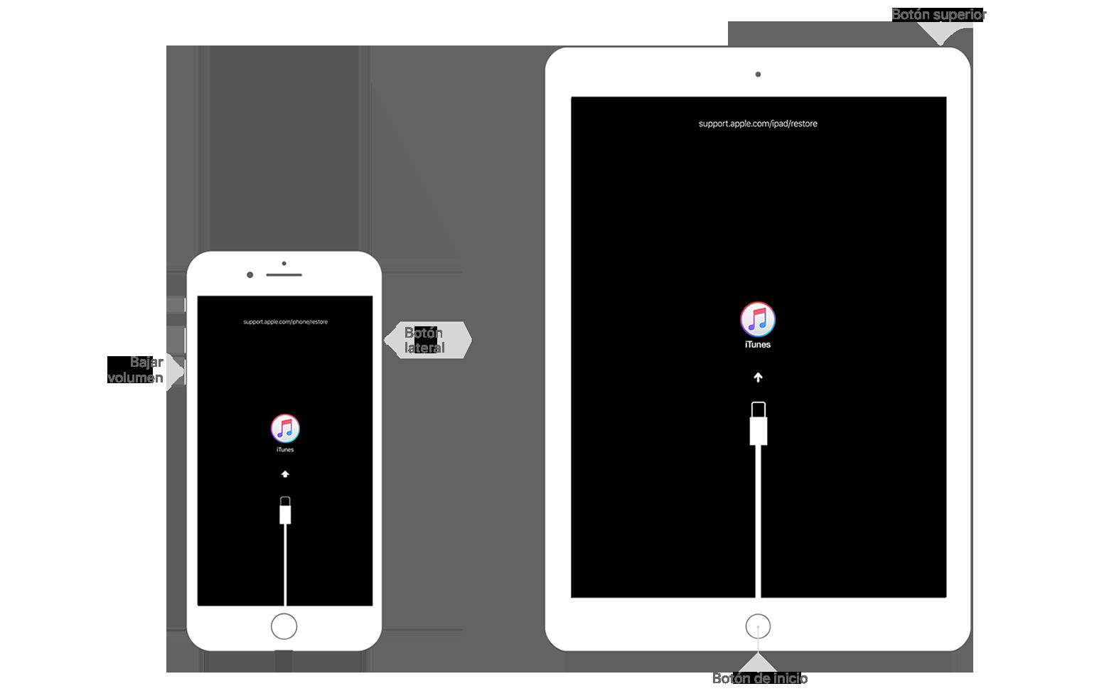 Si olvidaste el código de tu iPhone, iPad o iPod touch, o si