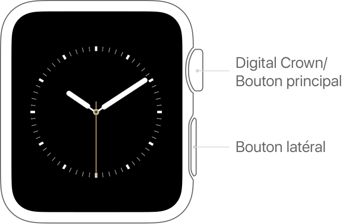 Digital Crown et bouton latéral sur l'Apple Watch