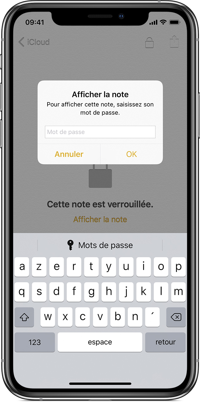 iPhone affichant l'invite de saisie du mot de passe de l'option Afficher la note