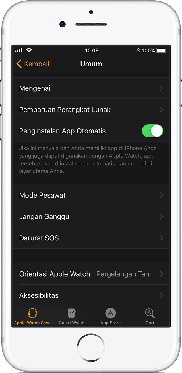 Pengaturan Umum di iPhone