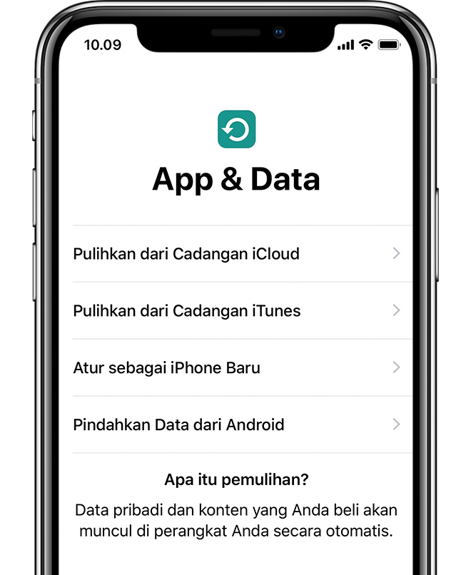 Pilihan Aplikasi & Data di iPhone X.