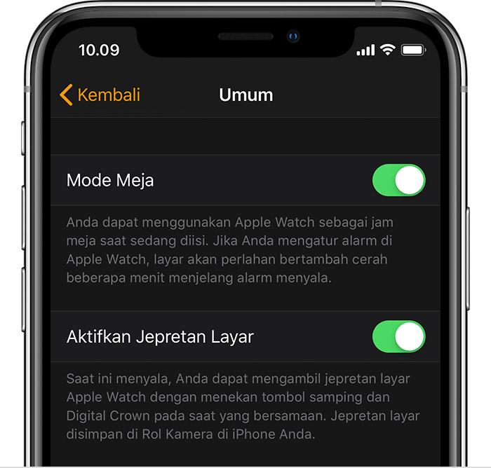 Pengaturan Umum di iPhone.