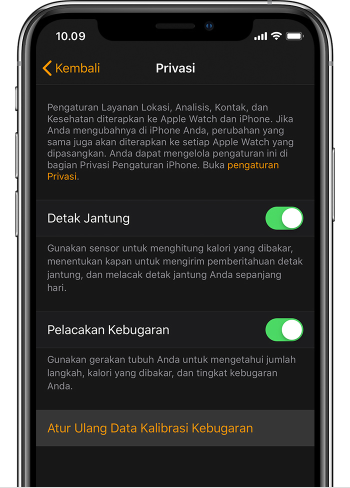Pengaturan Privasi di iPhone