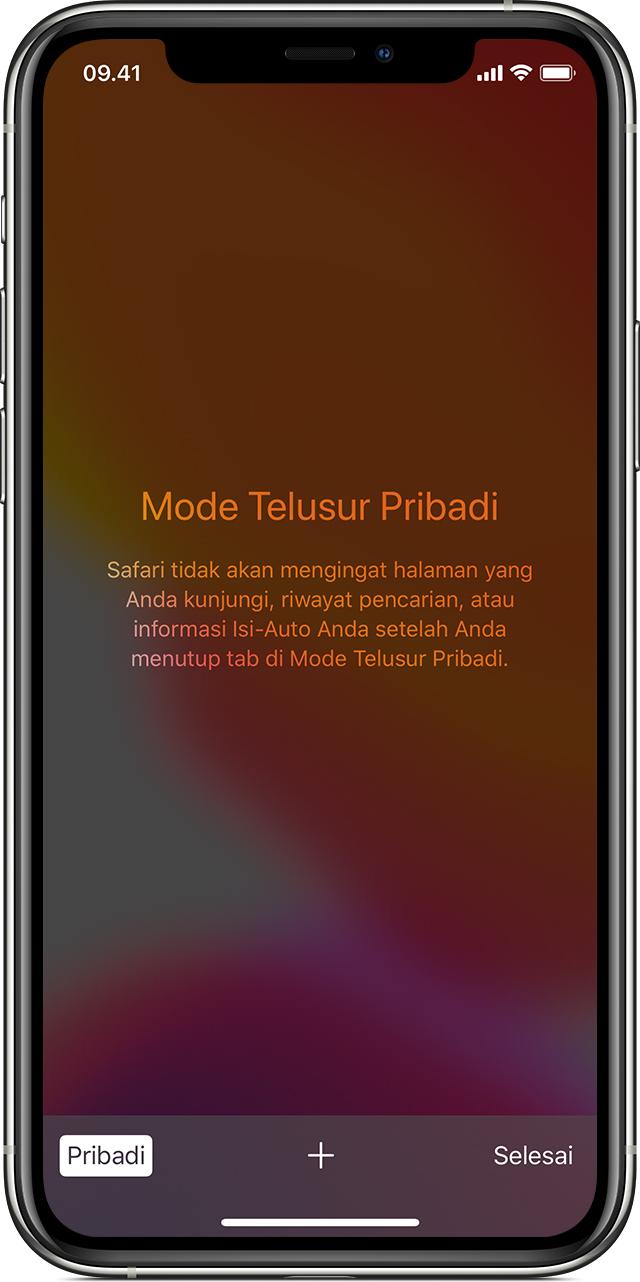 Menyalakan Atau Mematikan Penelusuran Pribadi Di Iphone Atau Ipod Touch Apple Support