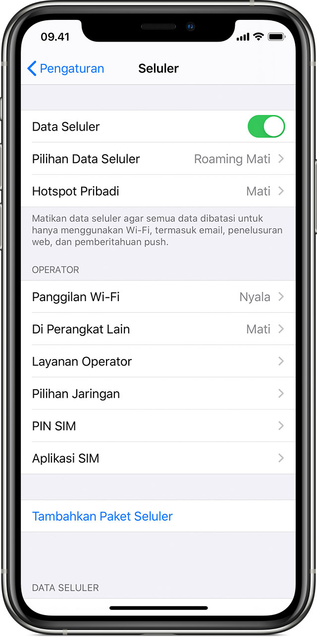Memeriksa penggunaan data di iPhone dan iPad - Apple Support