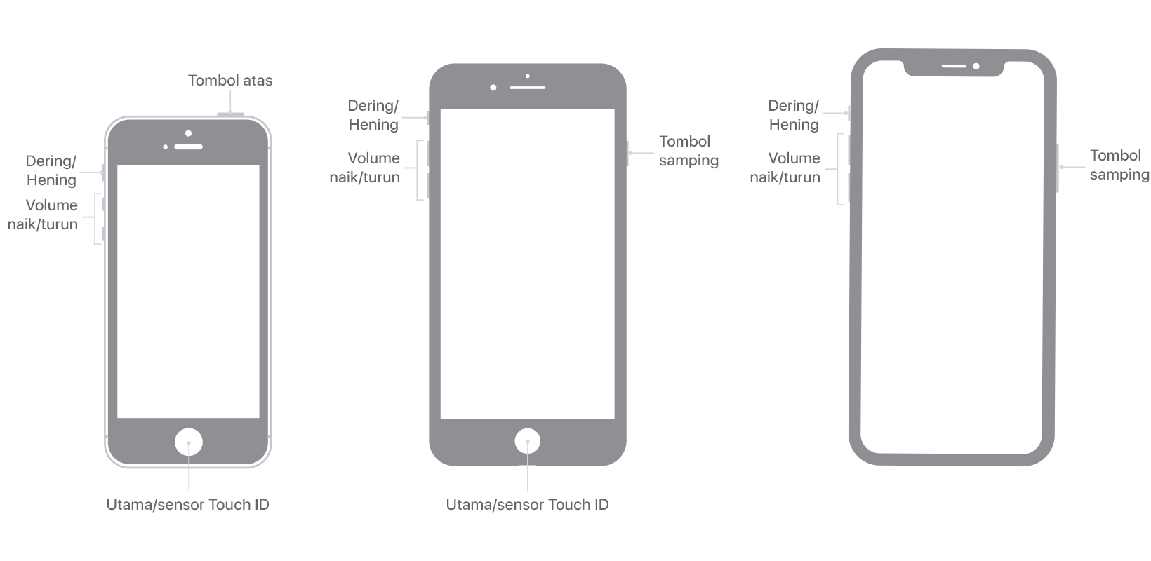 Menggunakan Tombol Samping Utama Dan Lainnya Di Iphone Apple Support