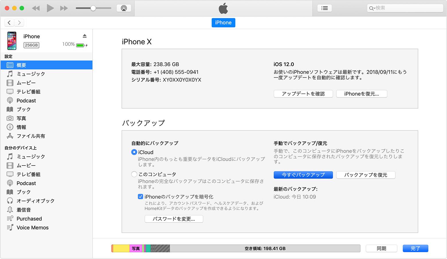 iTunes の「概要」パネル