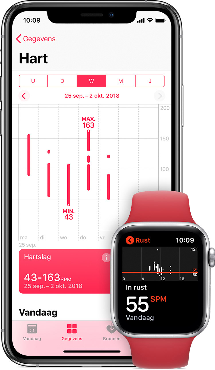 Hartslagmetingen in de Gezondheid-app op de iPhone en hartslag bij rust in de app op de Apple Watch.